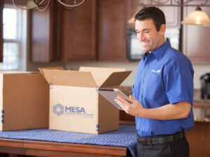 Mesa_Moving_Professional_Services